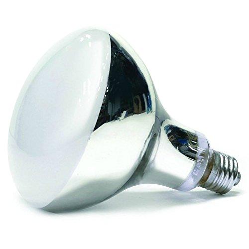Arcadia D3 UV Basking Lamp 100W Test