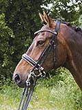 Hans Melzer Horse Equipment Kandare Hamburg LACK, schwarz/silber, Warmblut