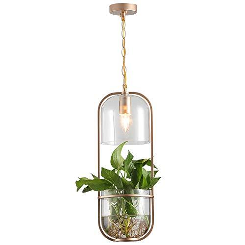 Persönlichkeit Hängeleuchte Restaurantlampe Flur Balkon Pflanze Pendelleuchte Ländlicher Stil Hängelampe Kreative Eisen Grüne Pflanze Design E27 D20CM