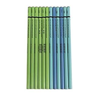 Afinder 12pcs Skizzierstifte Bleistifte Set Professional Art Set Künstler Zeichnen Zubehöre Skizzieren Zeichnen und Kunstbedarf Geschenkset für Anfänger Schüler