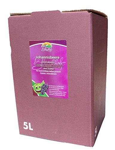 Schwarzer Johannisbeersaft vom Bleichhof - 100% Direktsaft, naturrein und vegan. OHNE Zusatzstoffe und Zuckerzusatz. Bag-in-Box mit praktischem Zapfsystem (1x 5 l Saftbox) - Schwarz Saft