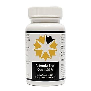 Artemia Eier A Qualität algova® (50 g)
