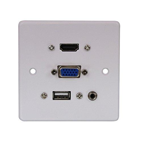 Lindy - Placa de pared con puertos VGA/HDMI/USB/conector de audio estéreo de...