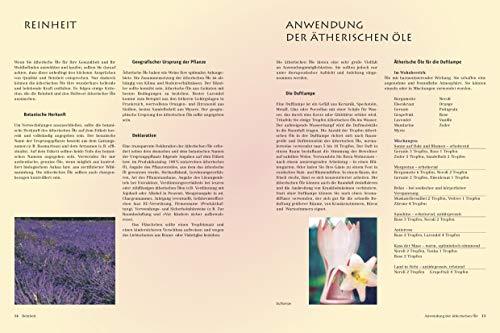 Himmlische Düfte: Das grosse Buch der Aromatherapie - 2
