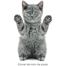 Carnet de mots de passe: Journal d'adresses de sites web et de mots de passe - Couverture avec un chaton joueur