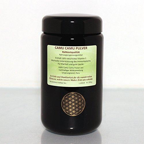 Regenbogenkreis Camu Camu Pulver, Rohkostqualität Violettglas 50g