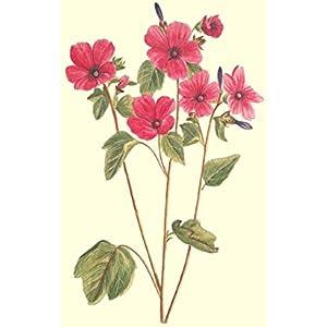 Blumen (Leinwand)
