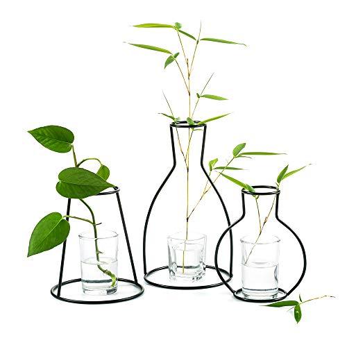 Wedecor Set mit 3 kreativen Blumentöpfen für den Schreibtisch, mit Glasbecher, Vasen und Metallständer aus Eisen für Wasserpflanzen, Blumengestecke Dekoration (3 Stck)