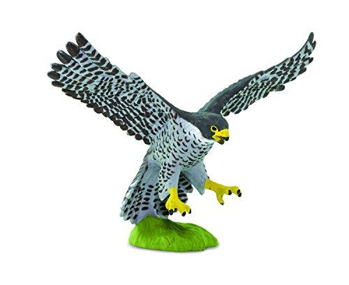 Safari Hippy Armband WOW Birds Peregrine Falcon Miniatur