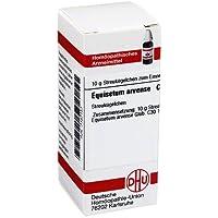 EQUISETUM ARVENSE C 30 Globu 10 g Globuli preisvergleich bei billige-tabletten.eu
