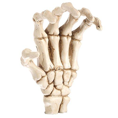 Non-brand Resin Skelett Hand Modell Figur Handskelett Bewegliche Knochenteile Dekor