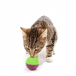 OurPets Play-N-Treat Twin Pack Cat Toy 16