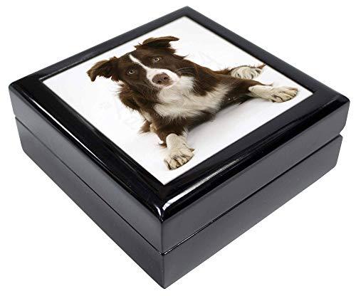 Advanta - Jewellery Boxes Leber und weiß Border Collie Andenken/Schmuck Box Weihnachten Geschenk -