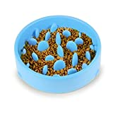 AiQInu Anti Schling Napf Hunde Rutschfest Hundenapf spülmaschinenfest Umweltfreundlicher ungiftiger für die langsame Fütterung Futternapf Hund Blau