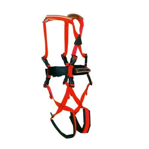 child-gait-trainer-gait-training-harness-for-special-needs-kids-by-lucky-bums