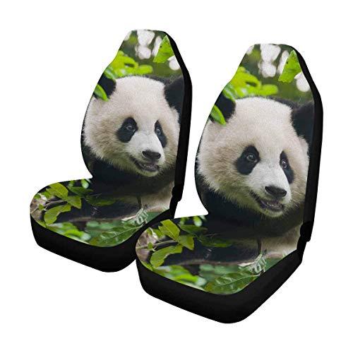 DLing Young Giant Panda Bear in Tree Coprisedili per Auto Set Completo di 2, coprisedili per Auto