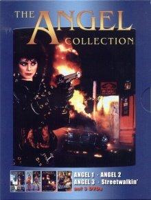 Bild von Angel 1-3 [3 DVDs]