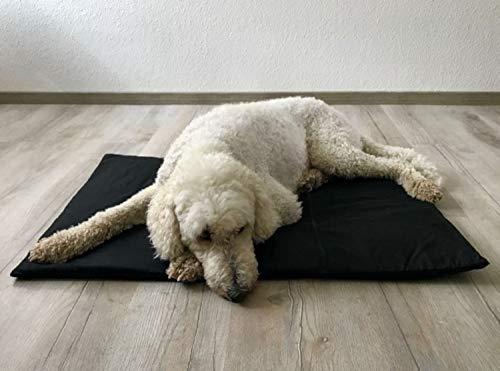 biomagnet24 98cm x 70cm Magnetfeldmatte, Magnetfelddecke für Hunde und Pferde, Magnetfeldtherapie, Hundebett, Hundematte ideal geeignet bei Arthrose, Ellenbogendysplasie, Altersschwäche in Anthrazit