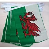 World of Flags 3m 10 flag Welsh Dragon Bunting (Wales) by World Flag Shop