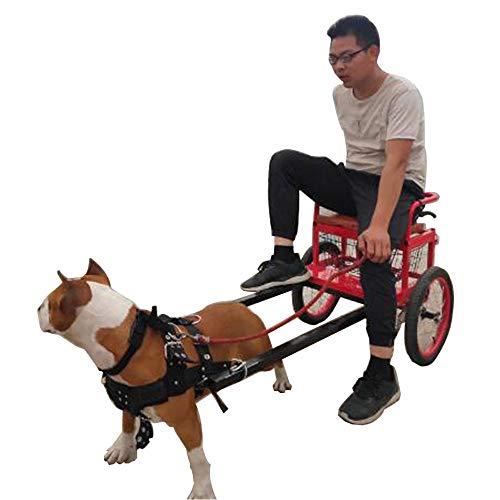 ZXDFG Pet Dog Pull Cart Large Dog - Geeignet Für Große Hunde Bis 40 Kg - Faltbarer Hundewagen Pull Cart + Schultergurt Mit Gurt,48-58cm