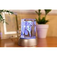 Foto cristal 3D con forma de rectángulo, regalo personalizado, regalo memorial, regalos originales para mujer, regalo cumpleaños mujer, regalo abuela, regalo foto personalizada