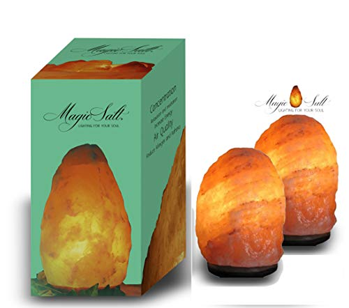 GeoFossils - Juego de lámparas de sal (2 unidades, sal del Himalaya, 2-3 Kg), color naranja