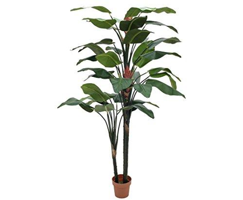 Strelizie, mit zwei grossen bunten Blüten, Höhe 220cm – Kunstpflanzen Kunstblumen künstliche Pflanzen