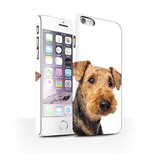 STUFF4 Matte Snap-On Hülle / Case für Apple iPhone 8 / Bull Terrier Muster / Hund/Hunde Kollektion Airedale Terrier