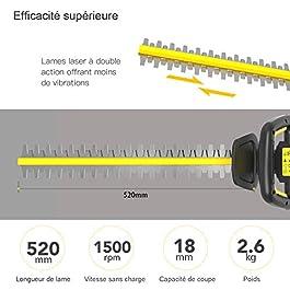 TECCPO Taille-Haie Électrique, 18V Taille-Haies à Batterie, 2.0Ah Taille-Haie sans Fil, 520mm Longueur de Lame, 18mm Capacité de Coupe, Lame à Double Action, Sécurité Triple-TDHT02G