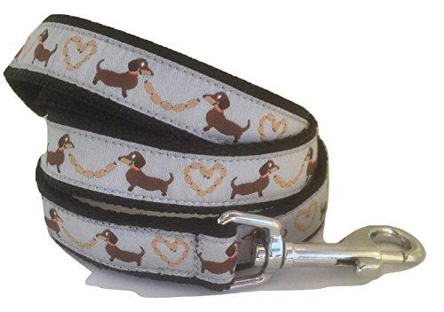 Correa Perro, perro salchicha gris