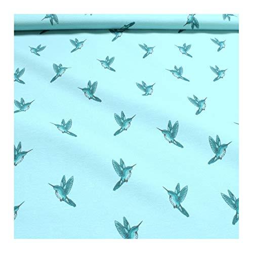 Stoff Baumwolle Elastan Single Jersey French Terry pastelltürkis Kolibri - Kolibri-stoff