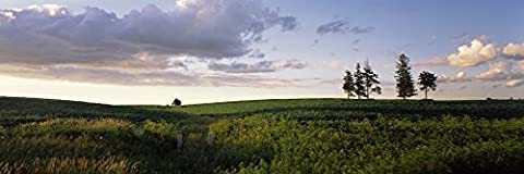 Panoramic Images – Clouds over a landscape Iowa County Wisconsin USA Kunstdruck (30,48 x 91,44 cm)