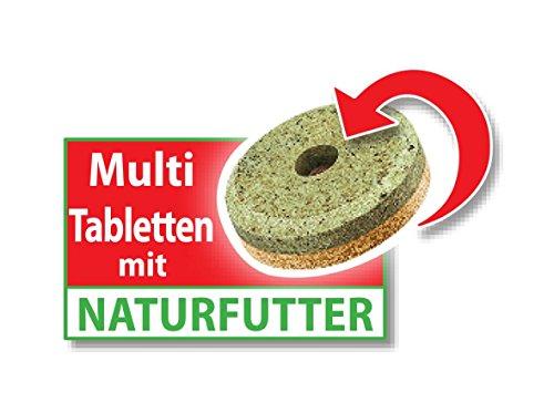 Tetra FunTips Tablets Haft-Futtertabletten, Hauptfutter, haftet an der Scheibe, zum Fische beobachten, 300 Tabletten - 4
