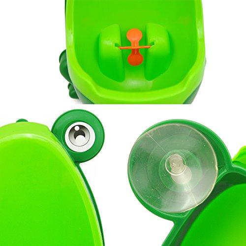 Coscelia Urinario Groove PP de Ni/ños//Beb/é de Rana de Vertical-Ayudante para Entrenamiento Verde