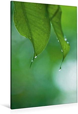 Premium Textile Toile de 30 cm x 45 cm filigrane haute Perles gouttes d'eau douce d'un verts feuilles | De Fin D'année Bonnes Affaires Vente