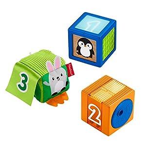 Fisher Price Bloques Sensoriales, Juguete para Bebés +6 Meses, plus (Mattel GJW13)
