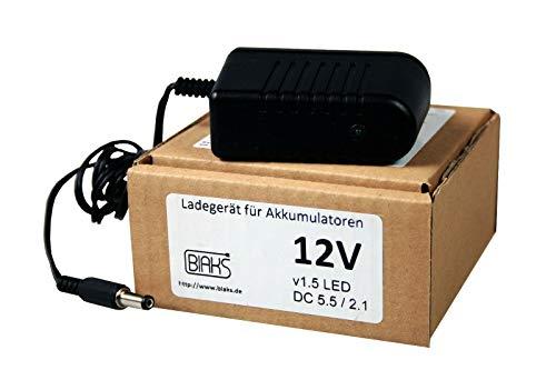 Maxy Ladegerät für Kinderauto Kindermotorrad Kinderfahrzeug 6V / 12V mit LED (12V)