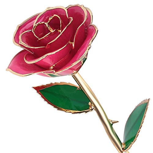 iebes Geschenk für Frauen: 24k Gold konservierte echte Rosen besondere Geschenke für Ehefrau Geburtstag Jahrestag Valentinstag Forever Rose(rosa) ()