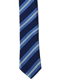 Cravate slim Homme rayures obliques bleue