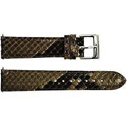 Watch Strap in Brown Python - 20 - - buckle in stainless steel - B20045