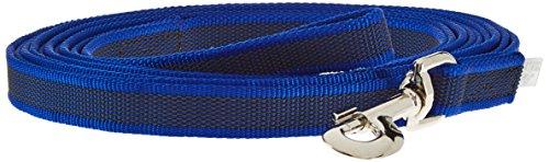 Julius-K9, 216GM-B-S5 Color & Gray Gumierte Leine Blau-Grau 20mm*5 m mit Schlaufe, max. für 50 kg Hunde