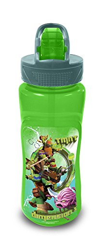 "Image of ""Teenage Mutant Ninja Turtles"" Aruba Bottle, 590 ml"