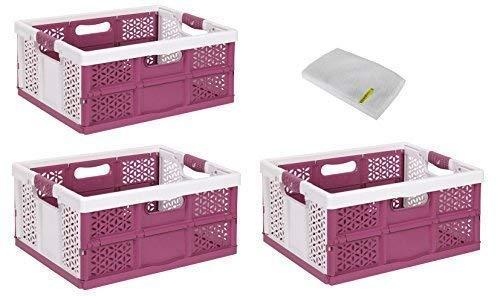 3 x Professionnelle pliante avec softgriffen Blanc/Berry 32 L Box Boîte Caisse de transport Panier à provisions Boîte pliable de jusqu'à 40 kg