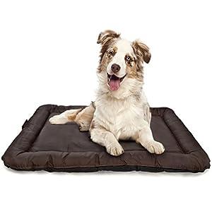 LAZY BAG Hunde-Kissen Hundebett Indoor und Outdoor Hunde-Körbchen; Schlafplatz für Hund & Katzen; wasserfest, abwischbar & schmutzabweisend; Größe M (75 x 52 cm)