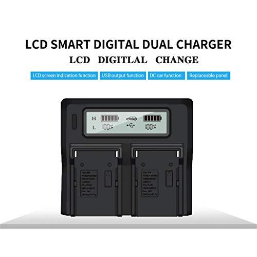 Dkings LCD Dual Fast Battery Ladegerät für Sony NP F770 F750 F570 F550 F530 NP F970 F960 F950 F930 NP-FM50 NP-FM500H NP-QM71D NP-QM91D Europäischer Standardstecker -