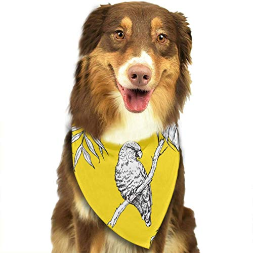 ds and Palm Leaf Orange Fashion Dog Bandana Pet Accessories Easy Wash Scarf ()