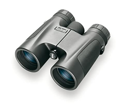 Jumelles 10x32 - Bushnell 141032 jumelles 10x32 powerview