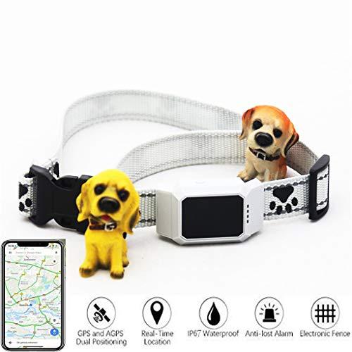 Danm Smart Pet Tracker, Beidou + GPS + WiFi + Basisstation Mehrfachpositionierung, Echtzeit-Hundekatzenfinder - Sicherheitszaun - Wasserdichter Alarm - Geeignet für alle Android-iOS-Geräte White Basisstation