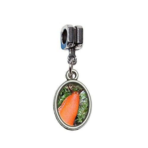 gross-orange-slug-schnecke-weichtier-italienischen-europaischen-euro-stil-fur-armbander-von-pandora-