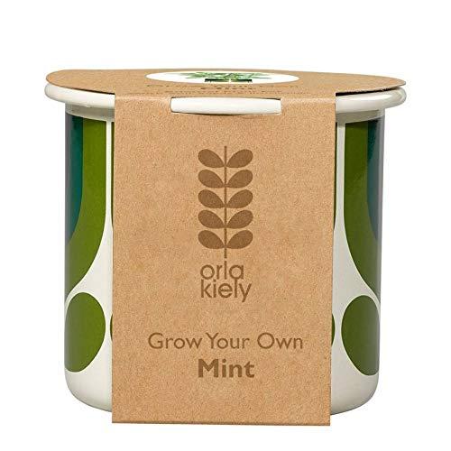 Orla Kiely rayé Tulipe Jade cultiver Vos Propres Mint